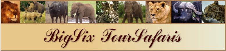 BigSix TourSafaris